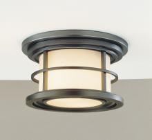 Feiss OL2213BB - 2- Light Ceiling Fixture